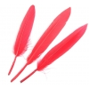 Duck Wing Quills Red Small